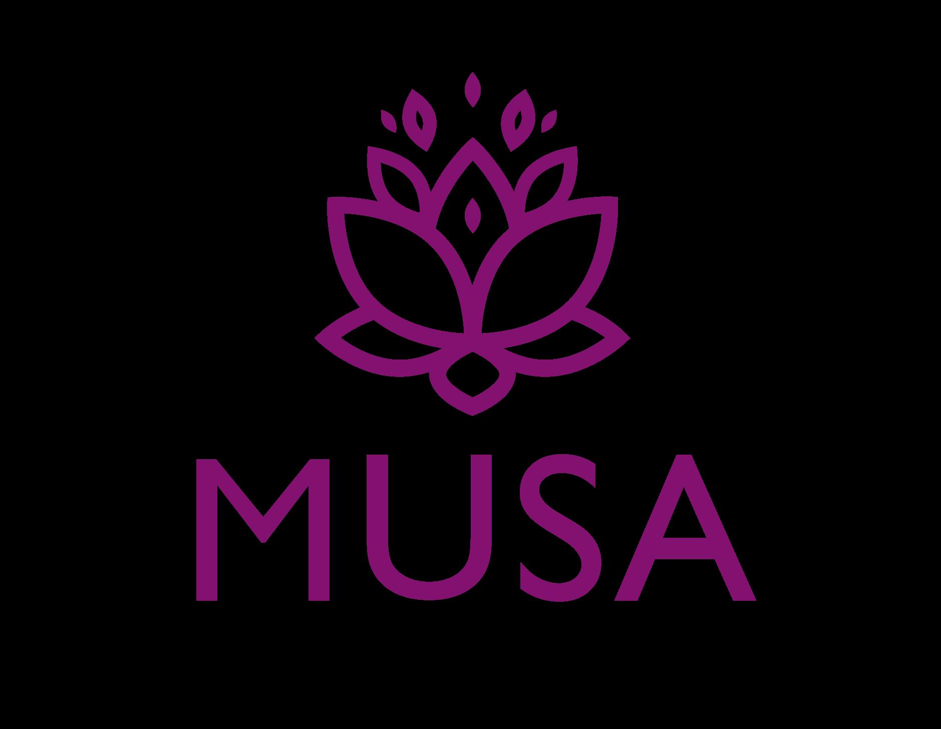 Programa Musa